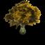 Emise z odlesňování